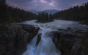 Picture forest, waterfall, stream, twilight