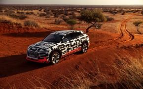 Picture Audi, vegetation, desert, 2018, E-Tron Prototype