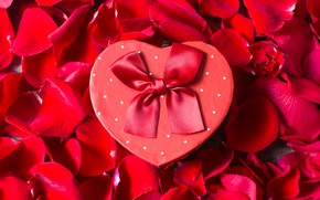 Picture gift, heart, roses, petals, tape, red, Valentine's Day