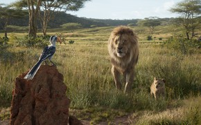 Picture bird, The Lion King, Simba, The Lion King, Mufasa