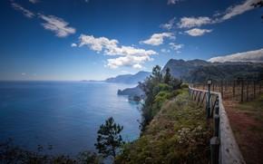 Picture sea, the sky, coast