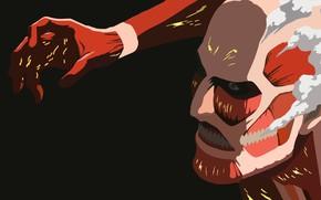 Picture art, Titan, attack of the titans, Shingeki no Kyojin