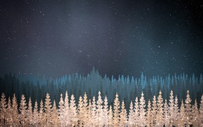 Picture Winter, Blue background, Texture, Winter, Texture, Blue Background, Night Forest, Ночной лес