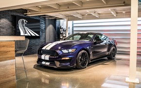Wallpaper Ford, Mustang, 2019, GT350, Shelby