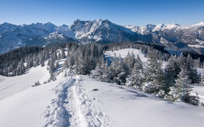 Picture winter, snow, trees, mountains, Switzerland, Alps