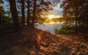 Picture the sun, trees, sunset, river