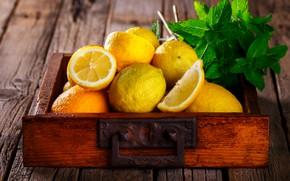 Picture lemon, citrus, mint