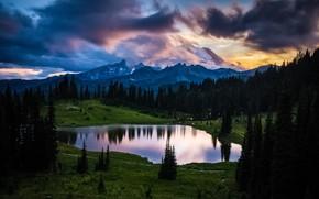 Picture forest, trees, landscape, mountains, clouds, nature, lake, USA, reserve, National Park, Mount Rainier, Mount Rainier, …