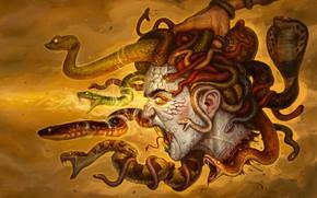 Picture Girl, Figure, Medusa, Hand, Eyes, Head, Snakes, Art, Fiction, Medusa, Gorgon, Gorgon, The Gorgon Medusa, …