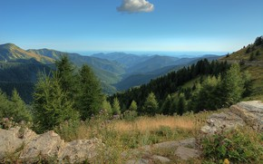 Picture forest, mountains, France, horizon