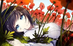 Picture Girl, Field, Maki