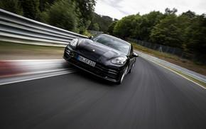 Picture black, speed, Porsche, Panamera, The Nürburgring, 2020, Nordschleife, предсерийный