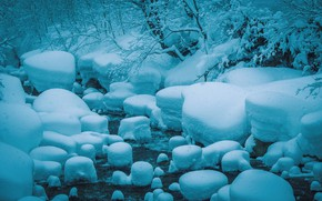 Picture Winter, Stream, Snow, River, Frost