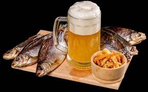 Picture foam, beer, fish, mug, Board, black background, bokeh
