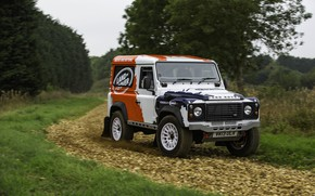Picture Land Rover, gravel, crushed stone, Defender, 2013, 2014, Challenge, Bowler