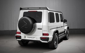 Picture Mercedes-Benz, rear view, AMG, Inferno, G-Class, Gelandewagen, Ball Wed, G63, Edition 1, 2019