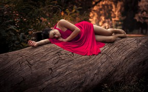 Picture trees, pose, model, makeup, figure, dress, brunette, hairstyle, lies, legs, in red, nature, ponytail, bokeh, …