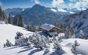 Picture winter, snow, trees, landscape, mountains, nature, house, Austria, ate, Alps, cottage, forest, Tyrol