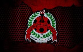 Picture wallpaper, sport, logo, football, Al-Rayyan