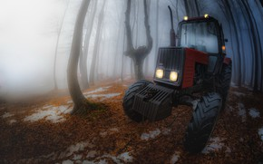 Picture nature, fog, tractor