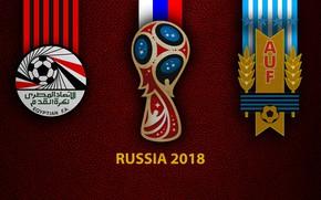 Picture wallpaper, sport, logo, football, FIFA World Cup, Russia 2018, Egypt vs Uruguay