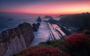 Picture Sunset, Sea, Coast