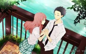 Picture romance, pair, Anime, two, 2016, You no Katachi, A Silent Voice, Form Voice