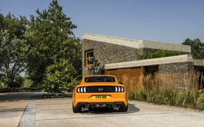 Wallpaper Ford, 2018, Parking, fastback, Mustang GT 5.0, feed, orange