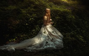 Picture FOREST, NATURE, GREENS, LEAVES, DRESS, BROWN hair, CORSET