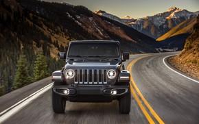 Picture tops, turn, the hood, before, 2018, Jeep, dark gray, Wrangler Sahara