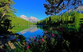 Picture mountains, lake, Switzerland