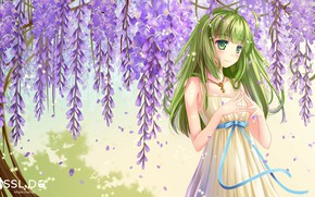 Picture girl, flowers, anime, art