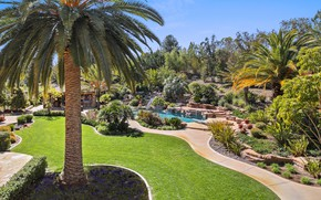 Picture greens, the sky, grass, the sun, trees, flowers, design, stones, palm trees, lawn, pool, garden, …