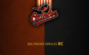 Picture wallpaper, sport, logo, baseball, Baltimore Orioles