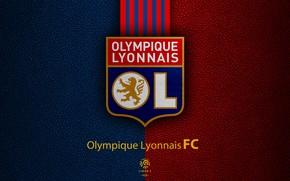 Picture wallpaper, sport, logo, football, Ligue 1, Olympique Lyonnais