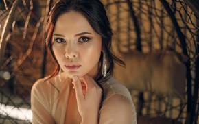 Picture look, pose, model, portrait, makeup, brunette, hairstyle, bokeh, Natalia Bogachenko