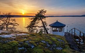 Picture sunset, Norway, Norway, Svartskog