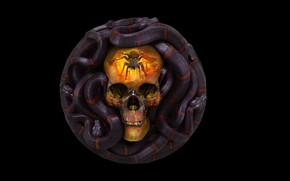 Picture rendering, skull, snake, art, Grigory Lebidko, 12 Sins: Envy