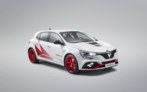 Picture tuning, Renault, Trophy-R, Megane R.S.