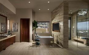 Picture room, interior, sauna, bathroom