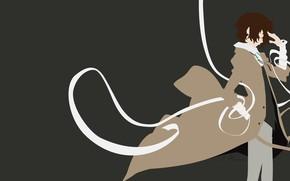 Picture minimalism, Bungou Stray Dogs, Dasi