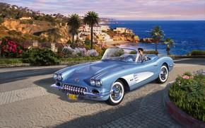Picture Roadster, Corvette, Driver, car, double, 1958