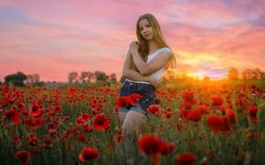 Picture sunset, Maki, girl