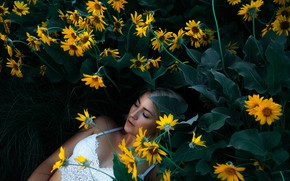 Picture girl, flowers, yellow, lies
