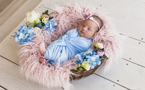 Picture flowers, basket, baby, sleeping, baby