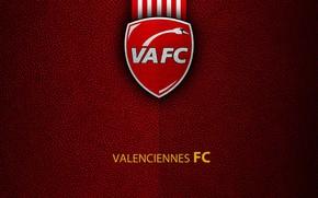 Picture wallpaper, sport, logo, football, Ligue 1, Valenciennes