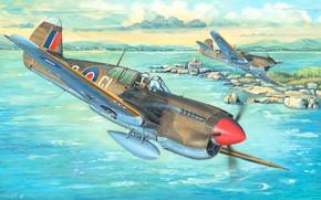 Picture fighter, P-40 Warhawk, Combat aircraft, Curtiss P-40M Warhawk, P-40M