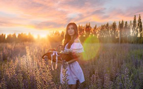 Picture field, summer, look, girl, the sun, rays, sunset, flowers, pose, basket, dress, beautiful