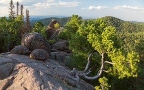 Picture trees, landscape, mountains, nature, stones, Posts, pine, forest, reserve, Krasnoyarsk Krai, Victor Zaitsev
