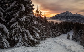 Picture winter, road, snow, trees, landscape, sunset, mountains, nature, ate, Poland, Tatras, Kubatek Andrzej